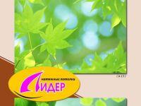 c_200_150_16777215_00_images_fotopechat_19.jpg