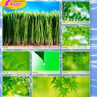 c_200_200_16777215_00_images_Bigprint_63.jpg
