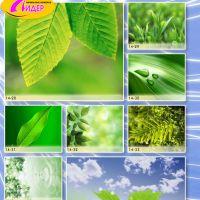 c_200_200_16777215_00_images_Bigprint_65.jpg