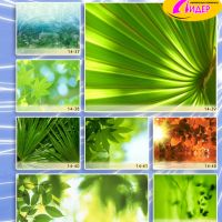c_200_200_16777215_00_images_Bigprint_66.jpg