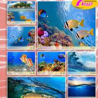 c_200_200_16777215_00_images_Bigprint_70.jpg