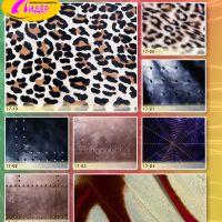 c_200_200_16777215_00_images_Bigprint_75.jpg