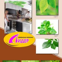 c_200_200_16777215_00_images_fotopechat_17.jpg