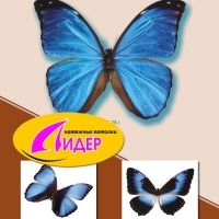 c_200_200_16777215_00_images_fotopechat_30.jpg
