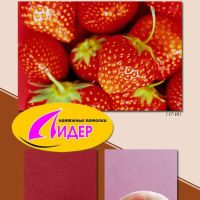 c_200_200_16777215_00_images_fotopechat_52.jpg