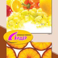 c_200_200_16777215_00_images_fotopechat_56.jpg
