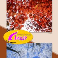 c_200_200_16777215_00_images_fotopechat_64.jpg