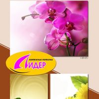 c_200_200_16777215_00_images_fotopechat_71.jpg