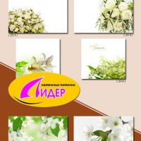 c_200_200_16777215_00_images_fotopechat_75.jpg