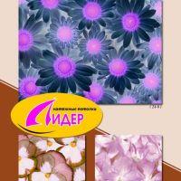 c_200_200_16777215_00_images_fotopechat_78.jpg