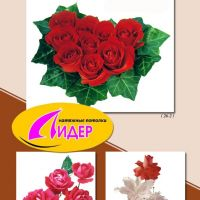 c_200_200_16777215_00_images_fotopechat_88.jpg
