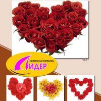 c_200_200_16777215_00_images_fotopechat_90.jpg